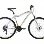 Bicicleta GM 2