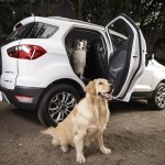 Ecosport_Pets-2