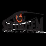 Logo_Selvagem_Filmes_NOVO